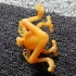 Frog with wings image