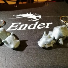Picture of print of Keychain / Smartphone Stand