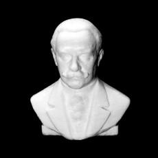 Alexandru Vaida Voievod bust in Cluj, Romania