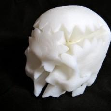 Rotating Skull Gear