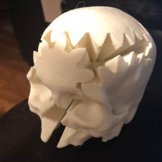 Picture of print of Rotating Skull Gear