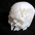 Rotating Skull Gear image