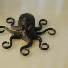 Picture of print of Octopus Magnet
