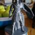 Elite Knight - Dark souls print image