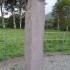 Ogham Stone - Coolmagort - Ireland image