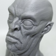 The Ghoul bust