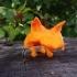 Angry fox image