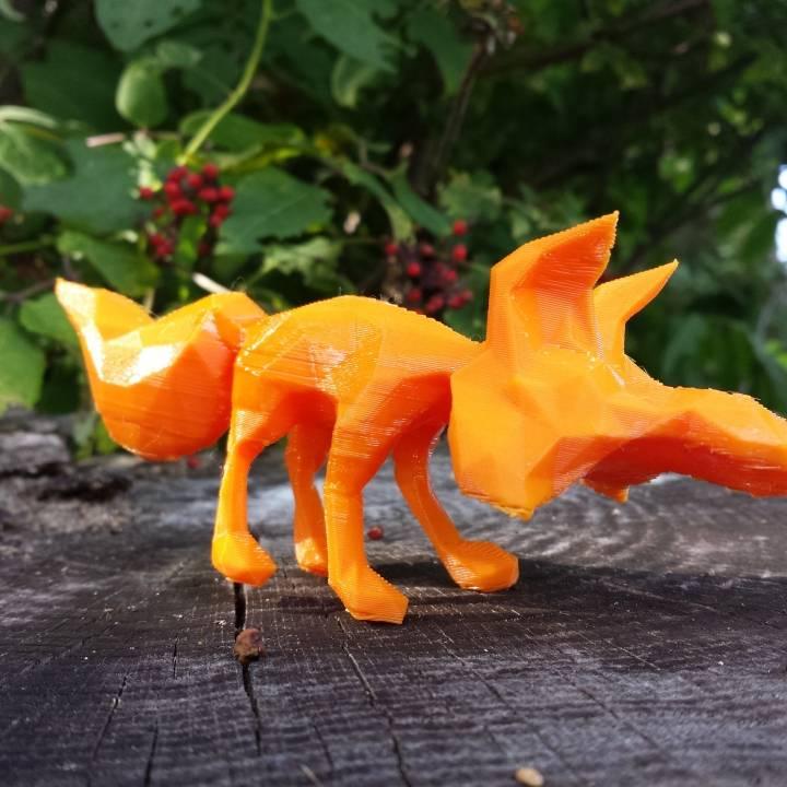 Angry fox
