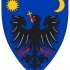 Wallachia Coat of Arms in Cluj, Romania image