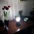 Cyclotower Lamp image