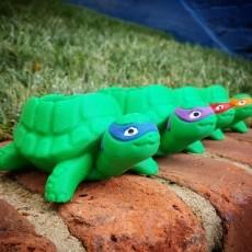 Teenage Mutant Ninja Turtles-inspired Turtle Planter!