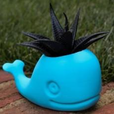 Cute Whale Planter!