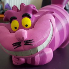 Picture of print of Cheshire Cat 这个打印已上传 Terry Theobald
