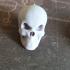 Skull Necklace print image