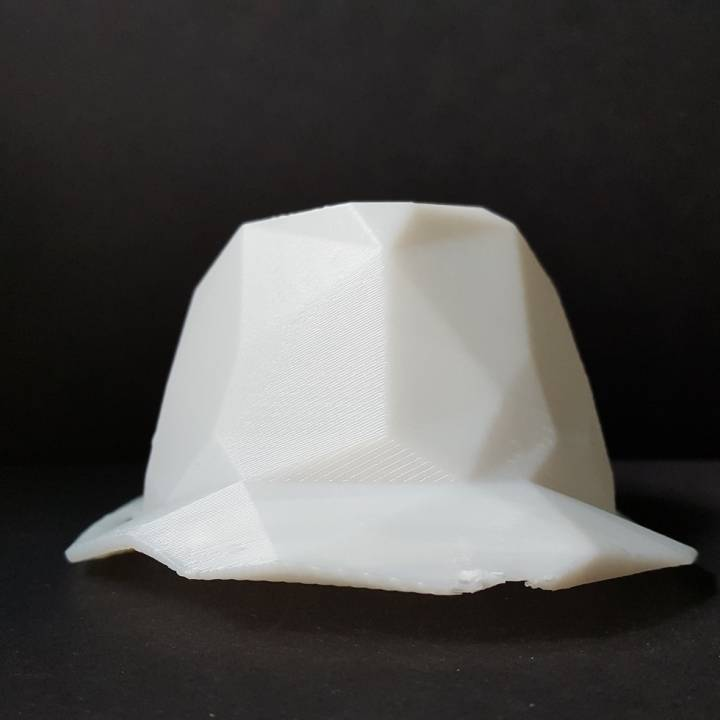 Low poly hat