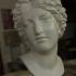 Bust of The Nymph Salmacis at The Réunion des Musées Nationaux, Paris image