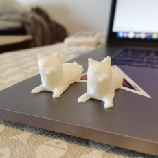 Picture of print of Low Poly Cat 这个打印已上传 Shyish