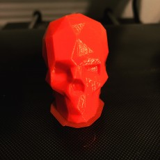 Picture of print of Low Poly Skull