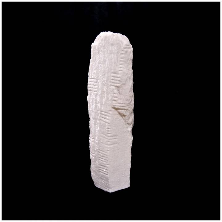 Ogham 3D - CIIC 263. Ardmore I, Co. Waterford