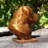 Labrador Bust image