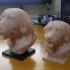 Labrador Bust print image