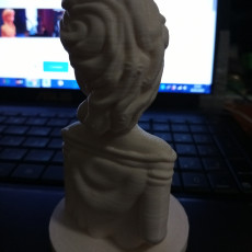 Picture of print of Frozen: Elsa Bust 这个打印已上传 Olena Savenko