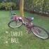 TABLET BALL image