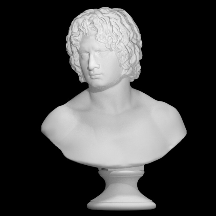 Bust of a Young Man, possibly Arminius Puskin at The Faculty of Classics, Cambridge