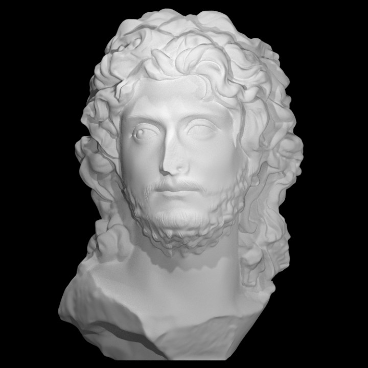 Head of a Barbarian Leader at The Faculty of Classics, Cambridge