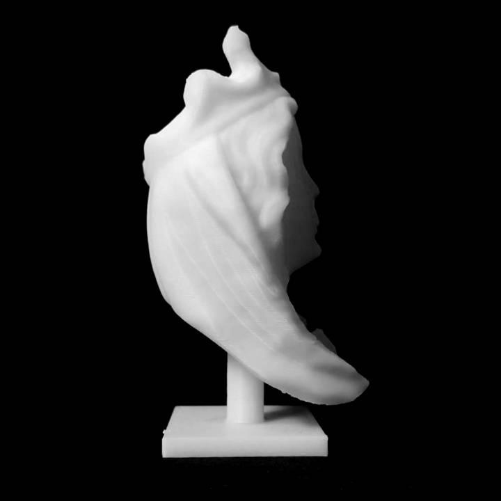 Head of the Virgin at The Musée des Beaux-Arts, Lyon