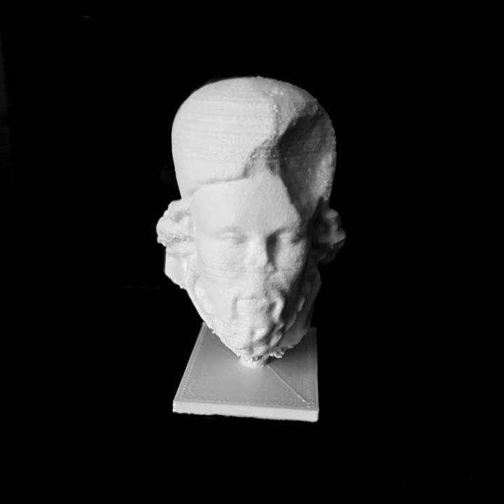 Head of a Prophet at The Musée des Beaux-Arts, Lyon