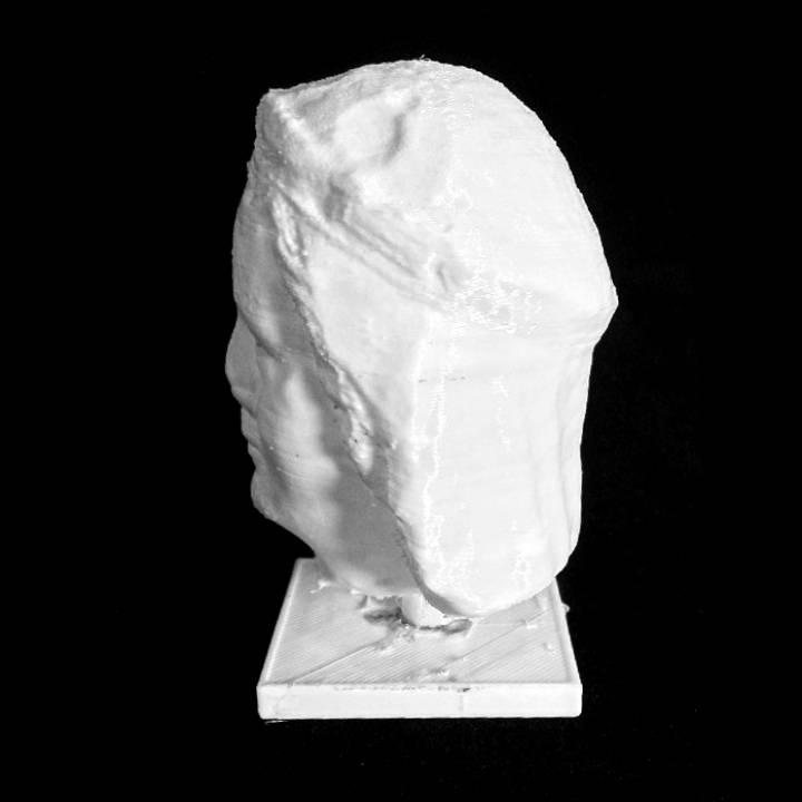Head of a Virgin at The Musée des Beaux-Arts, Lyon