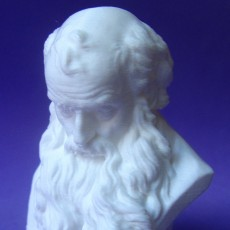 Picture of print of Head of a Bearded Old Man