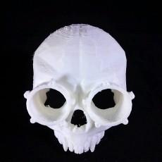 Steampunk Skull helmet