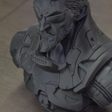 Picture of print of Deus Ex Mankind Divided Jensen Bust