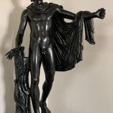 Picture of print of Apollo Belvedere
