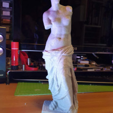 Picture of print of Venus de Milo (Aphrodite of Milos) This print has been uploaded by Sandro