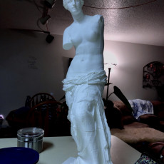Picture of print of Venus de Milo (Aphrodite of Milos) This print has been uploaded by Jerry Fisher