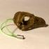 Eagle (Osprey) Skull image