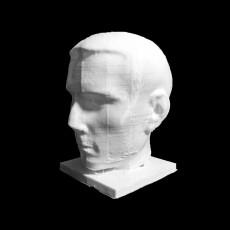 Portrait of a Roman