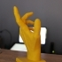 Hand Anatomy image