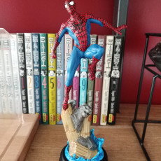 Picture of print of Spiderman