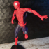 Spiderman print image