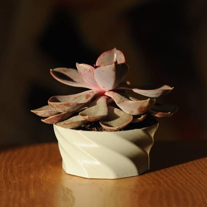 Twisted plant pot