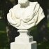 Bust of a Man (Poro) image