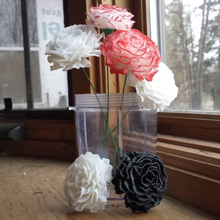 Carnation Flower Blossom Top