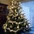 Christmas decoration pine cone image