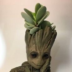 "Picture of print of Baby Groot flower pot: ""Gardens"" of the Galaxy 2 This print has been uploaded by Ryan Hopkins"