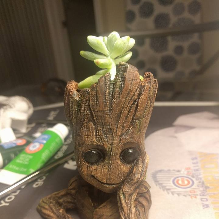 "Picture of print of Baby Groot flower pot: ""Gardens"" of the Galaxy 2 This print has been uploaded by Mitch Balke"