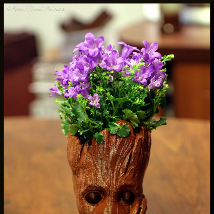 "Picture of print of Baby Groot flower pot: ""Gardens"" of the Galaxy 2 This print has been uploaded by Adrian Siemieniak"